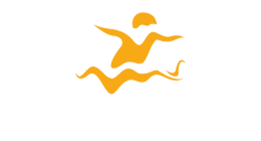 Rollerfanatic Logo retina